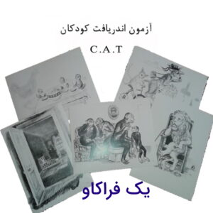 راهنمای کامل اجرا و تفسیر آزمون اندریافت کودکان cat +به همراه تصاویر